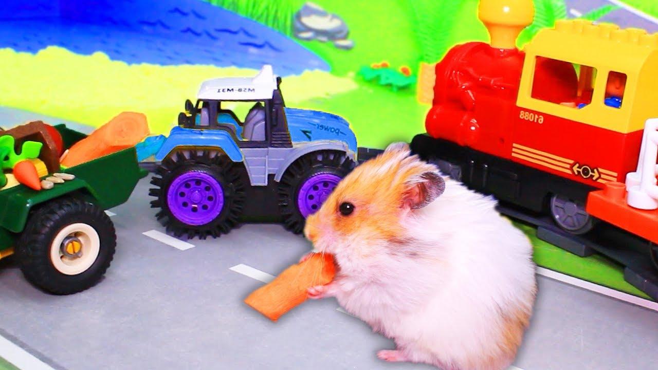 Новый мультик для детей с игрушками. Хомячок обжора! Видео ...