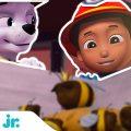 Щенячий патруль | Щенки спасают королеву пчел