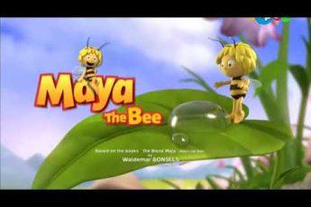 Пчёлка майя(60)
