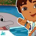 Гоу, Диего, Гоу! | Диего спасает речного дельфина 🐬| Nick Jr. Россия