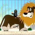 Крот в зоопарке