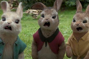 Приключения кролика Питера (6+)