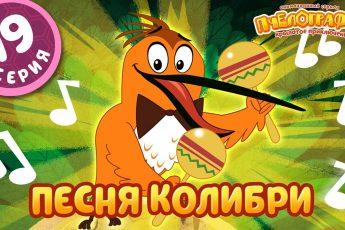 ПЧЕЛОГРАФИЯ - Мультик для детей - 19 серия - Песня колибри
