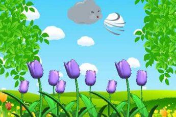 весняні квіти-первоцвіти