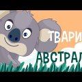 ТВАРИНИ АВСТРАЛІЇ для дітей! Розвиваючі мультики українською мовою