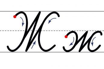 Как пишется буква Ж. Пишем букву Ж правильно и красиво. Исправляем почерк.