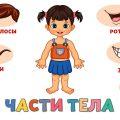 Учим части тела для детей Развивающие мультики для малышей