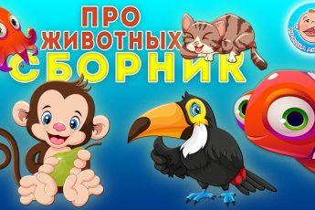 Все серии про животных - Развивающие мультфильмы Крошки Антошки для детей