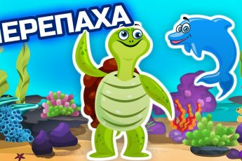 Язык какого животного понимает морская черепаха - Морские обитатели - Животные для детей